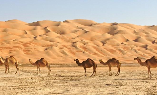 Oman: Fernreise zu zweit